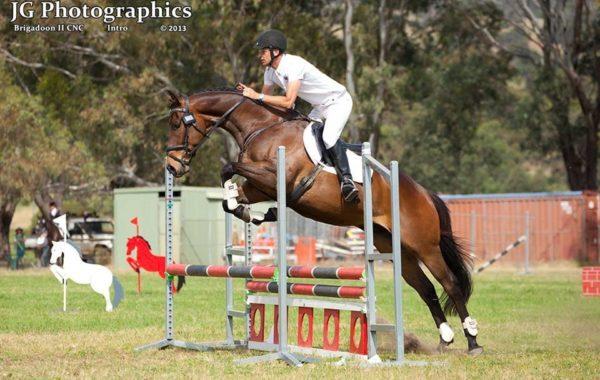 Wayne Brush<br/>Equestrian Coaching